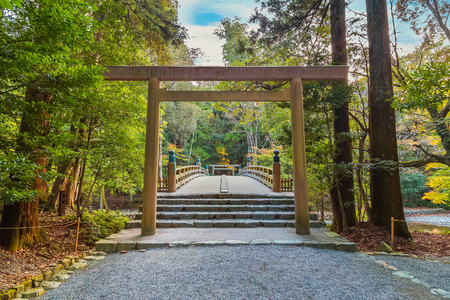 Ise Jingu Naiku(Ise Grand shrine - inner shrine) in Ise City, Mie Prefecture   MIE, JAPAN - NOVEMBER 20, 2015: Ise Grand Shrine (Naiku - inner shrine, officially known as Kotai Jingu) dedicated to the worship of Amaterasu -  the goddess of the sun Editorial