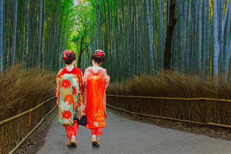 arboleda: Geisha japonés en Chikurin-no-Michi (bosque de bambú) en Arashiyama en Kyoto Kyoto, Japón - 22 de noviembre de 2015: Geisha japonés no identificado en Chikurin-no-Michi (bosque de bambú) en el distrito de Arashiyama