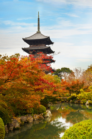 koyo: Toji Temple in Kyoto, Japan  KYOTO, JAPAN - NOVEMBER 23 2015: Toji temple, literally East Temple, founded at the beginning of  Heian Period, after the capital was moved to Kyoto