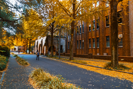 TOKYO, JAPAN - NOVEMBER 28 2015: Tokyo University (or Todai for short) is Japans most prestigious university. Tokyo University usually ranks as Japans best university, often number one in Asia Editorial