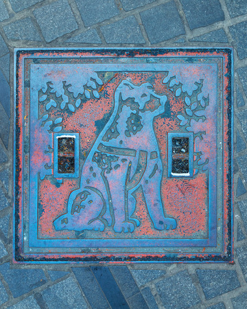 k9: TOKYO, JAPAN - NOVEMBER 28 2015: Hachiko manhole cover at Shibuya station, the dog is remarkable loyalty to his owner which continued for ten years waiting for his owner at thw station after his owners death