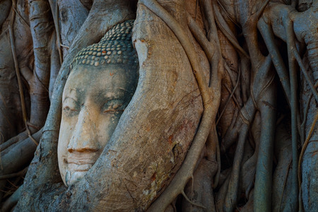 ayuthaya: Famous Buddha Head with Banyan Tree Root at Wat Mahathat Temple in Ayuthaya Historical Park, a UNESCO world heritage site, Thailand