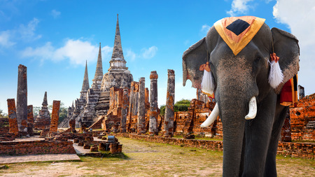 ayuthaya: Wat Phra Si Sanphet temple in Ayutthaya Historical Park, a UNESCO world heritage site, Thailand   AYUTTHAYA, THAILAND - NOVEMBER 4 2016: Wat Phra Si Sanphet temple in Ayutthaya Historical Park, a UNESCO world heritage site Editorial