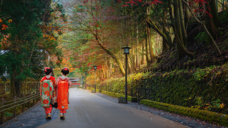 maiko: Japanese Geisha on a Misty Road Stock Photo