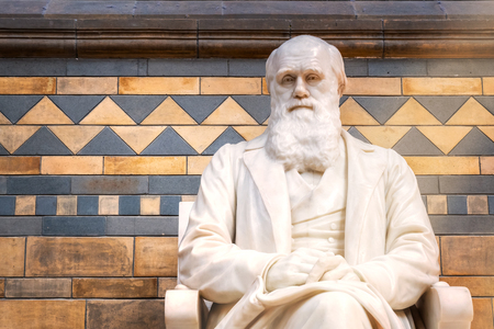 LONDON, UNITED KINGDOM - MAY 14 2018: Sir Charles Darwin English naturalist, geologist and biologist his statue situated at the main hall of The Natural History Museum in London Reklamní fotografie - 108015698