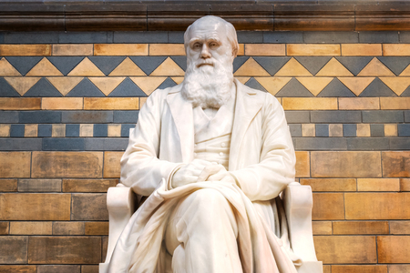 LONDON, UNITED KINGDOM - MAY 14 2018: Sir Charles Darwin English naturalist, geologist and biologist his statue situated at the main hall of The Natural History Museum in London