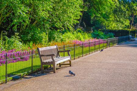 Beautiful nature at Kensington Gardens in London, UK