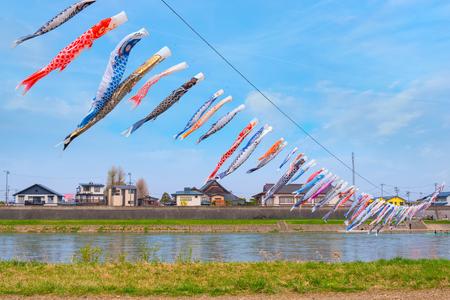 Koinobori carp-shaped windsocks over Kitakami river during fullbloom Cherry Blossom at Kintakami Tenshochi park Iwate , Japan Stock Photo