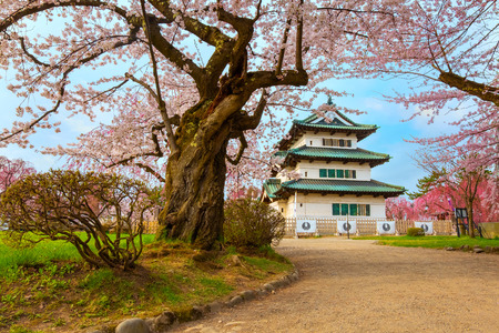 Sakura - Cherry Blossom full bloom at Hirosaki castle in Hirosaki park, Japan Stock Photo - 116167863