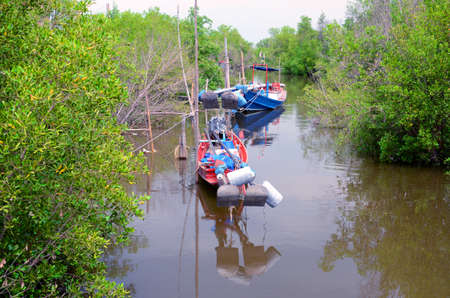 turner: Mangrove Boat