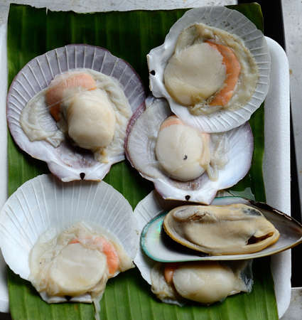 broiled mix shells ready to eat at Thai native market Stock Photo