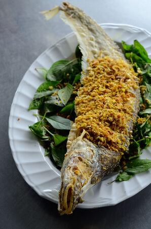 sheatfish: frito Sheatfish pescado (Micronema Apogon) sobre la mesa en el mercado tailand�s nativo