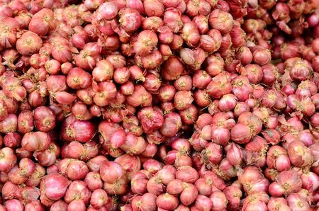 vegetate: many of dried onion at Thai market