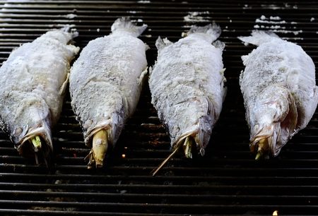 lates: sailty grilled barramundi or Asian seabass (Lates calcarifer) at Thailand market Stock Photo