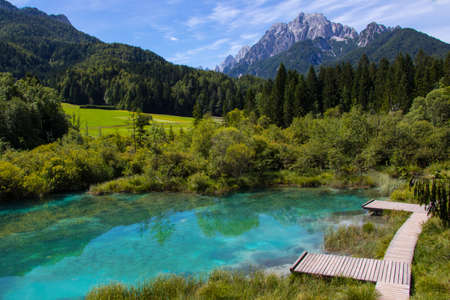Zelenci in Slovenia 스톡 콘텐츠
