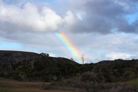 Rainbow in Gran Savana, Venezuela Stock Photo