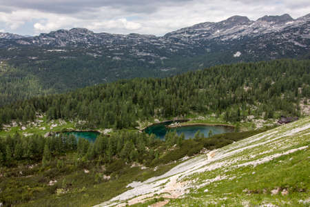 two Triglav lakes surrounded with trees 免版税图像