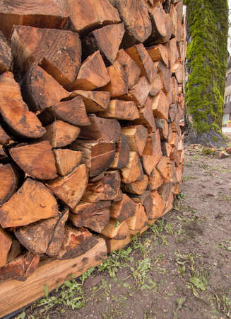round wood pile low angle Imagens - 124689856