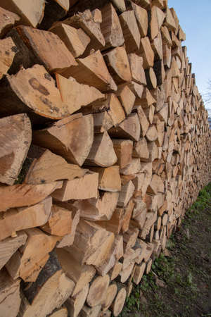 stockpile of logs from side Imagens
