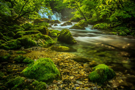 Spring river Bistrica and few rocks Stok Fotoğraf