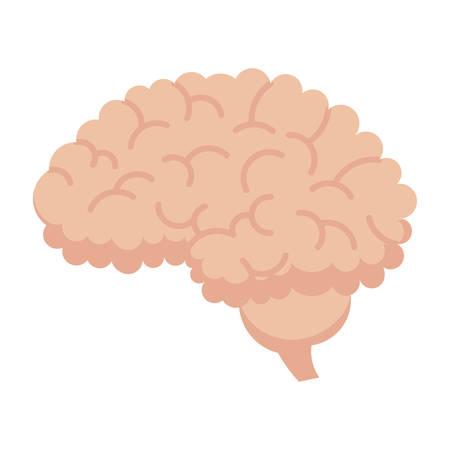 Human Brain Icon Illustration