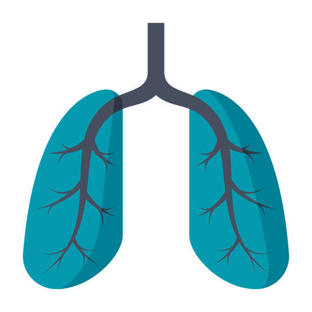 Lungs Medical Icon.