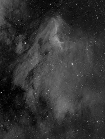The Pelican Nebula also known as IC 5070 and IC 5067 is an H region associated with the North America Nebula in the constellation Cygnus. The gaseous contortions of this emission nebula bear a resemblance to a pelican, giving rise to its name. The Pelican Banco de Imagens