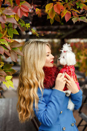 Luxury blonde girl with beautiful hair in a coat in autumn park holding a small dog in her arms Stock Photo