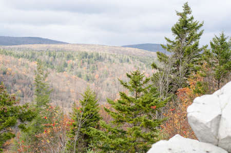 dolly: Dolly Sods Wilderness landscape, West Virginia Stock Photo