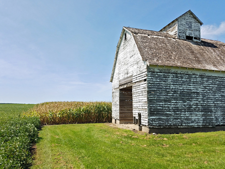 Old barn with chipped paint in an agricultural field