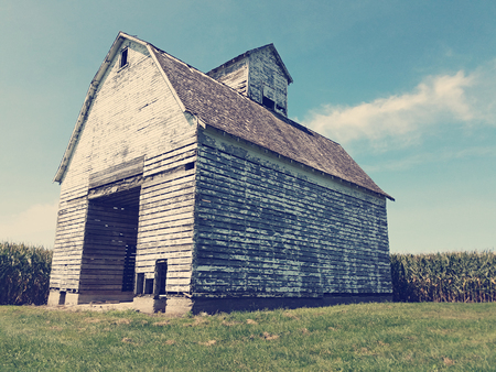 Vintage looking shot of an old barn with chipping paint in a corn field Stock Photo