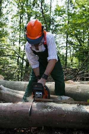 Lumber Jack with protective closing Stock Photo - 8871035