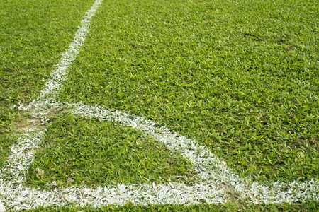 cut grass: football field with green grass and white line