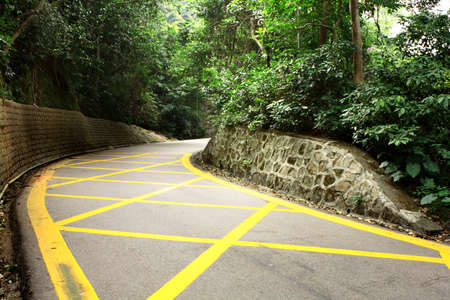 road with yellow lines and trees Stock Photo - 8937482
