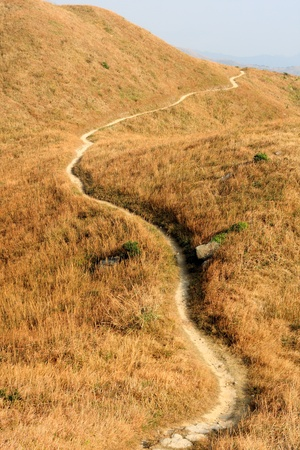 mountain path and yellow grass photo