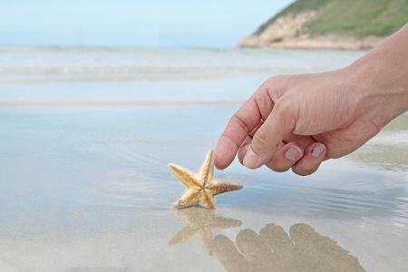 hand touching the starfish photo