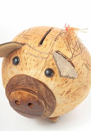 nestegg: piggy bank