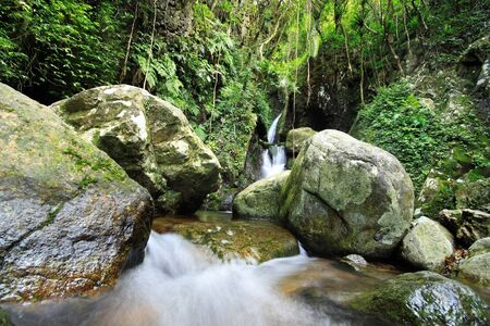 eravan: Waterfall making its way into a pond in the rainforest  Stock Photo