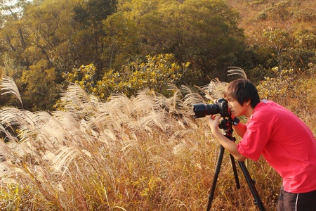 taking photograph: photographer taking photo in country side