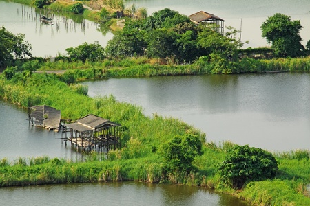 arroz chino: Arroz paisaje terraza en China