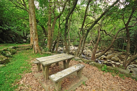 garden bench: Picnic place in forest