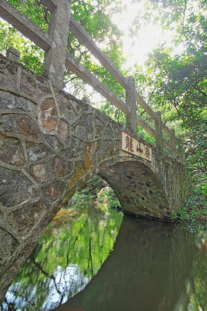Bridge in the forest photo