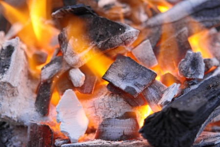 Decaying red coals of a tree in a fire
