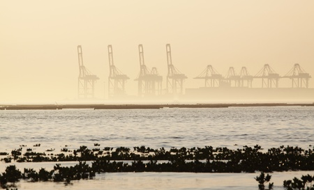 container cranes on a foggy morning photo