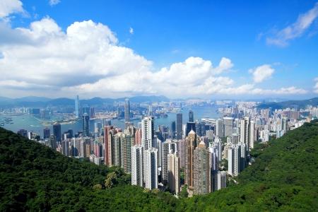 hong kong night: Hong Kong skyline from Victoria Peak