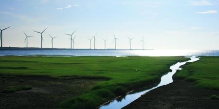 seacoast: Wind turbines in seacoast