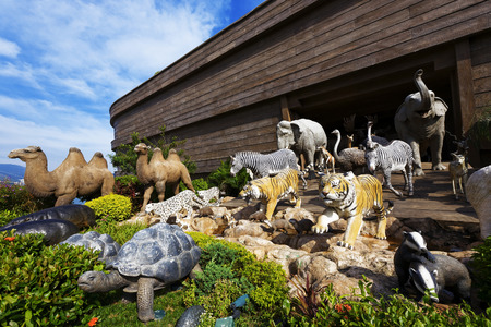 noahs ark photo