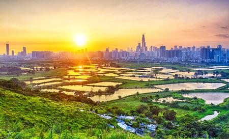 홍콩 시골, 쌀 필드와 현대적인 사무실 건물에서 일몰 스톡 콘텐츠