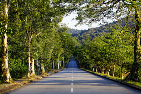 green road: road in mountains at sunset