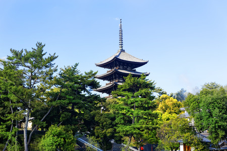wooden tower of To-ji Temple in Nara Japan is the largest temple pagoda in the country at a height of 54.8 meters.